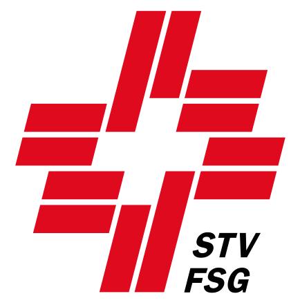 stv-fsg